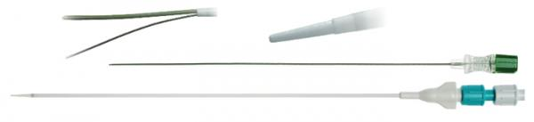introducer sheath and needles